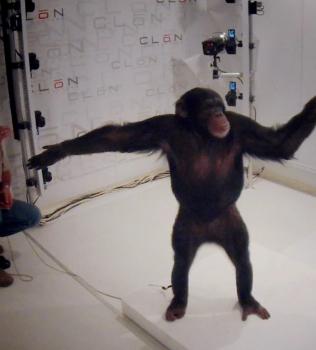 Weniger Tiere an Film-Sets durch Clonstudios